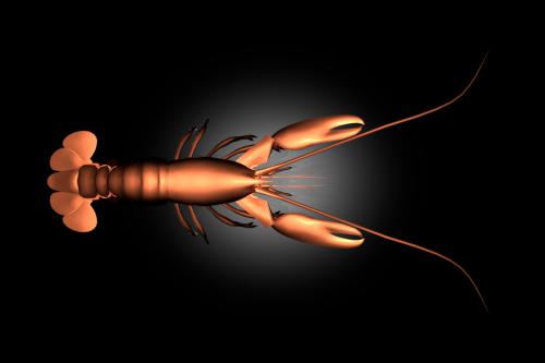 lobster2017