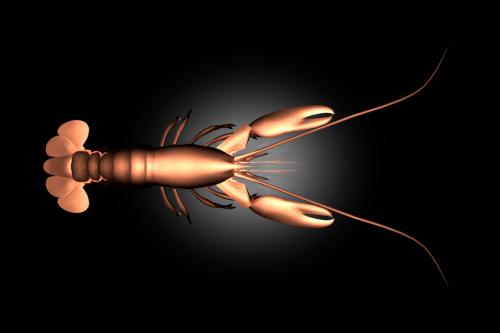 lobster2040